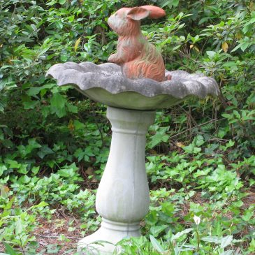 Things in Birdbaths that Are Not Birds #2