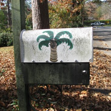 Almost Palmettos. But Not.