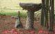 Rabbit Statue by Birdbath