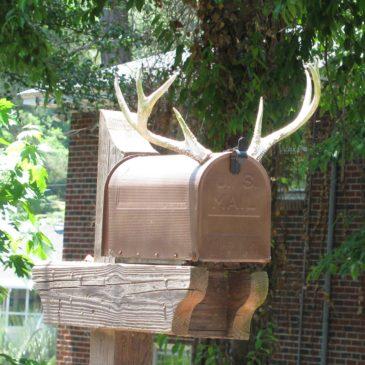 Antler Mailboxes