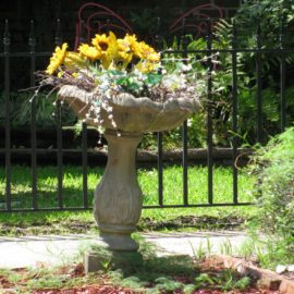 Things in Birdbaths that Are Not Birds #5