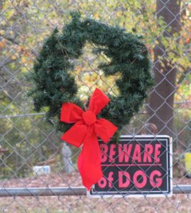 Wreath and Beware of Dog Sign
