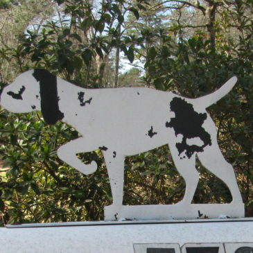 Bird Dog Mailbox