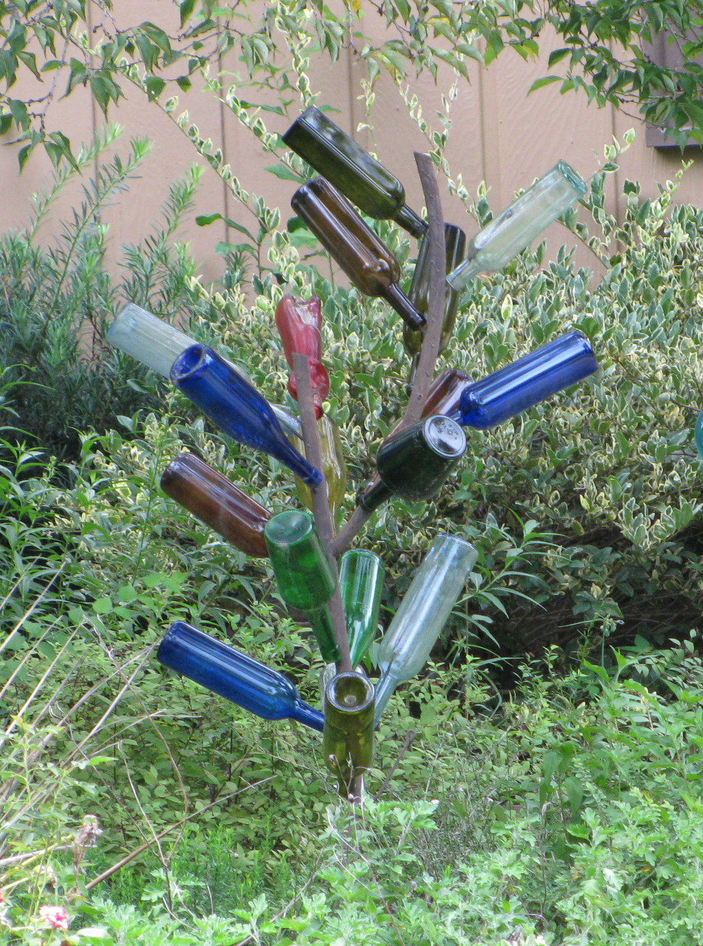 Bottle Trees – Lucy Nolan