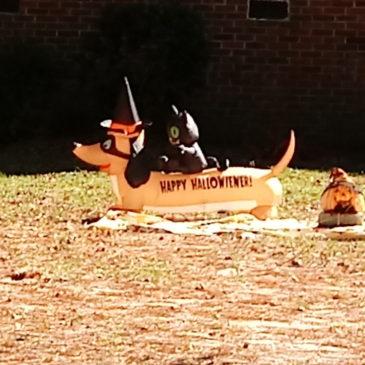 Hot Dog, It's Halloween!