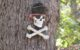 Pirate Symbol on Tree