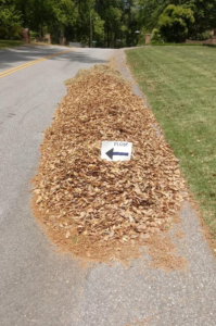 """Leaf Pile with """"Please"""" Sign"""